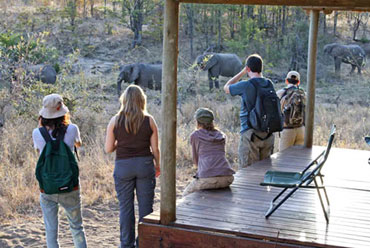 Elephant sighting tent Shindzela Tented Camp Timbavati Game Reserve Bush Camp South Africa