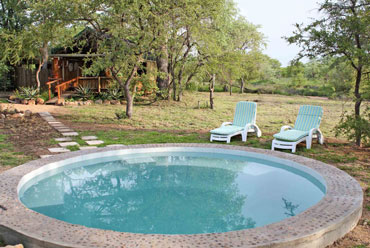 Plunge pool Shindzela Tented Camp Timbavati Game Reserve Bush Camp South Africa