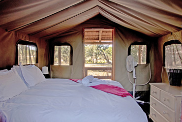 safari tent Shindzela Tented Camp Timbavati Game Reserve South Africa
