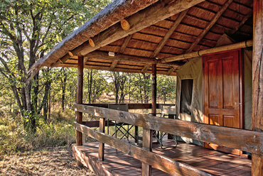 Shindzela Tented Camp Timbavati Game Reserve Bush Camp South Africa