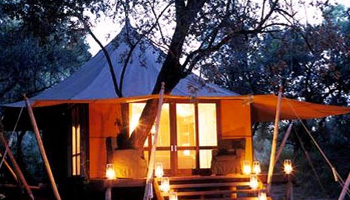 Ngala Tented Camp Timbavati Game Reserve Accommodation Bookings Kruger National Park