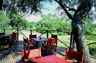 Umlani Bushcamp Deck view Timbavati Game Reserve Accommodation Safari Bookings